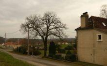 A@P Prospective village Soubestre