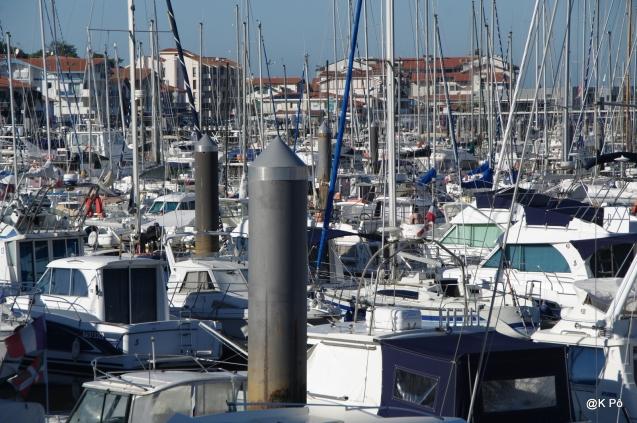 maman les petits bateaux font la fortune du port